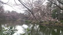 2012-04-03 11.21.33.jpg